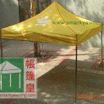 帳篷頂布顏色-黃色